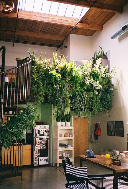 Horta na parede