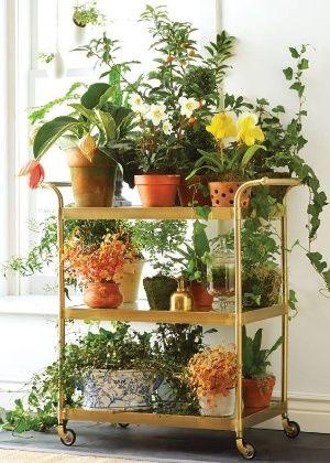 horta em apartamento criativa